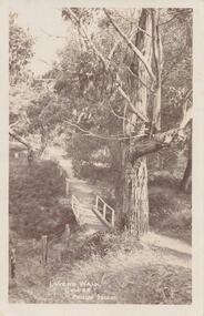 Photograph - Post Card