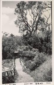 Photograph - Post Card, 1940's