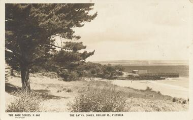 Photograph - Post Card, Early 20th Century