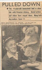 Newspaper Clipping, Edward the Koala, October 1965
