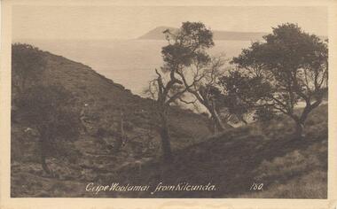 Photograph - Post Cards, Vallan Studios et al, Phillip Island