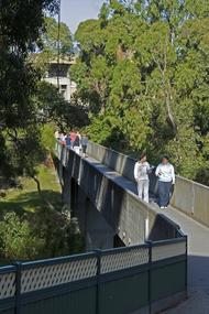 Students walking across a brid