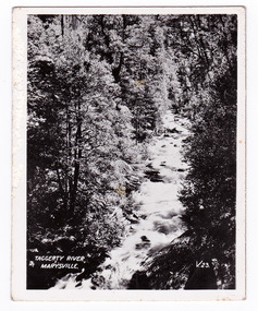 An early black and white photograph of the Taggerty River in Marysville, Victoria. The title of the photograph is handwritten in white ink on the lower edge. This photograph was produced by the Valentine Publishing Co Pty. Ltd. as a souvenir of Marysville.