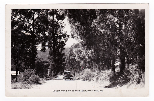An early black and white photograph taken of a road in Marysville, Victoria. This postcard was produced by Murray Views in Gympie, Queensland as a souvenir of Marysville. On the reverse of the postcard is a handwritten message.