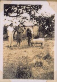 Photograph of three people and a pig