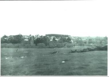 Photograph (Item), Malmsbury Township From Western Vantage Point, Malmsbury ca1950