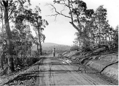Lady walking dog on a country road