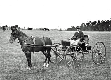 Four-Wheeled Horse-drawn Carriage as an Exhibit at the Diamond Creek Horticultural Show