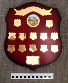 Wooden Shield, 2001