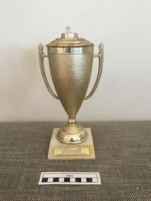 Trophy, 1984