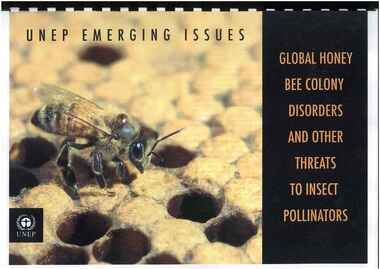 Publication, United Nations Environment Programme, UNEP emerging issues: global honey bee colony disorders and other threats to insect pollinators (United Nations Environment Programme), Nairobi, 2010