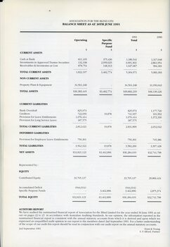 Balance sheet for the AFB