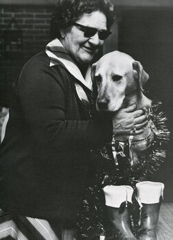 A blind woman pats a guide dog dressed in tinsel