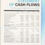 Consolidated Statement of Cash Flow as at the end of the financial year