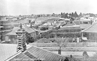 Photograph, Surrey Hills - Looking East from Essex Road, circa 1900, c1900