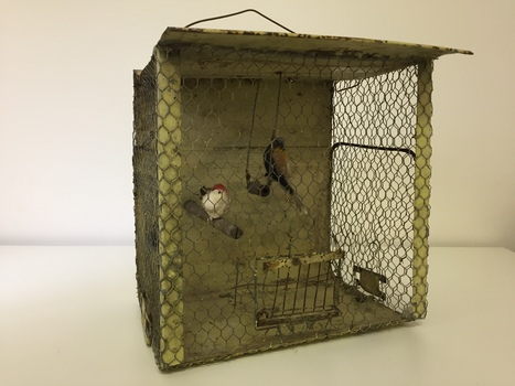 Functional object: Bird cage