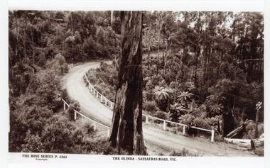 Photograph, The Olinda-Sassafras Road, Vic