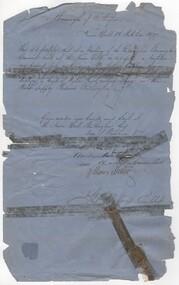 Document - Council permit, 1877 (Exact)