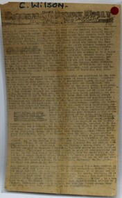 Newspaper, The Diggers Desert Daily