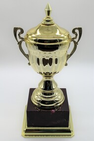 Trophy gold in color sitting on dark colored plastic stand.