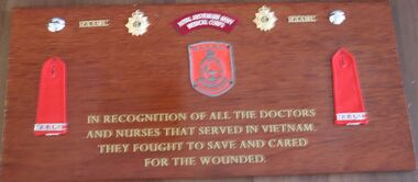 The plaque pays homage to the medical services in the Vietnam War.