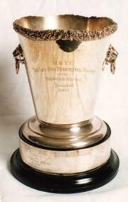 Trophy, Les Fox Trophy