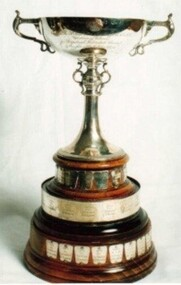 Cup, Huntingfield Cup